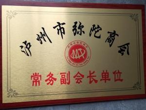 泸州市弥陀商会常务副会长单位